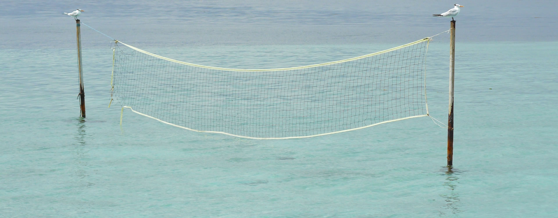 volleyball in the ocean