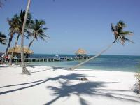 The Cayes image