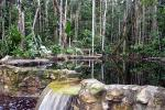 Image: Amazon Ecopark - Amazon lodges and cruises, Brazil
