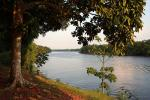 Dolphin Lodge - Amazon lodges and cruises, Brazil