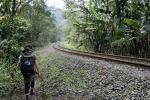 Image: Serra Verde train - Curitiba, Morretes and the Atlantic rainforest