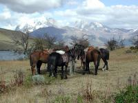 Riding in Chile itinerary thumbnail