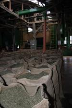 Image: Aquiares Coffee Estate - The Central highlands, Costa Rica