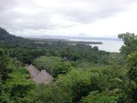 The Osa Peninsula image