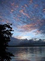 Image: Essequibo - The Central forest zone