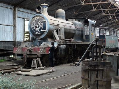 Steam train graveyard