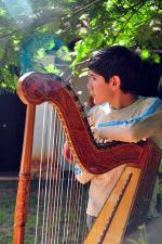 Image: Paraguayan harp - The Southern Missions