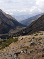 Image: MLP trek: Day 2 - The Inca Trails