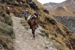 Image: MLP trek: Day 3 - The Inca Trails