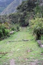 Image: MLP trek: Day 5 - The Inca Trails